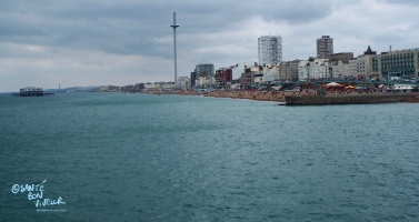 View of Brighton seafront, including the i360 & West Pier, from the Palace Pier